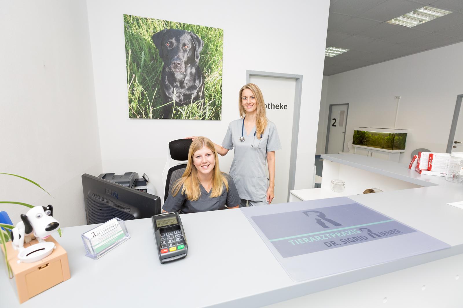 Freundlich und kompetente Praxis - Tierarztpraxis Dr. Sigrid Riener